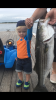 Eamon's Plum Island bass